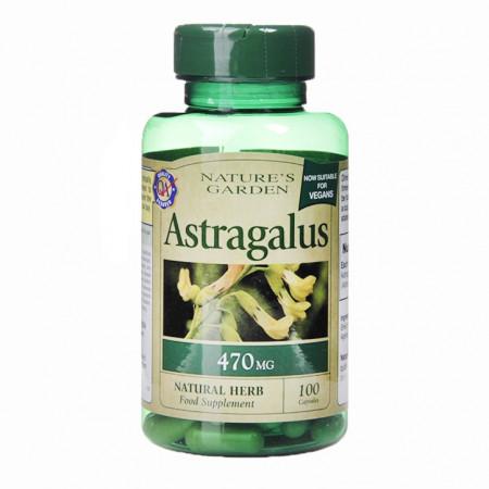ASTRAGALUS (Astragalus membranateus ) 470 mg, 100 capsule