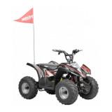 ATV cu acumulator pentru copii Hecht 54750
