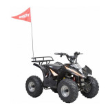 ATV cu acumulator pentru copii Hecht 54751