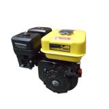 Motor Stager UP168-P1, benzina, 163 cmc