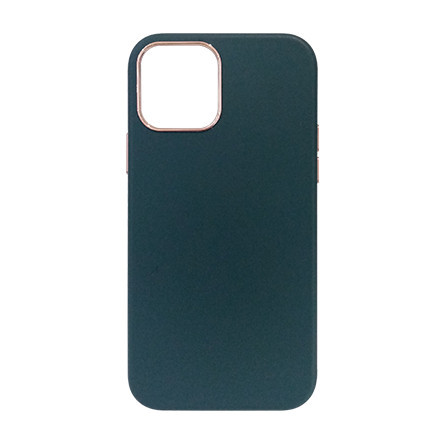 Carcasa iPhone 12 / 12 Pro Verde - Piele PU