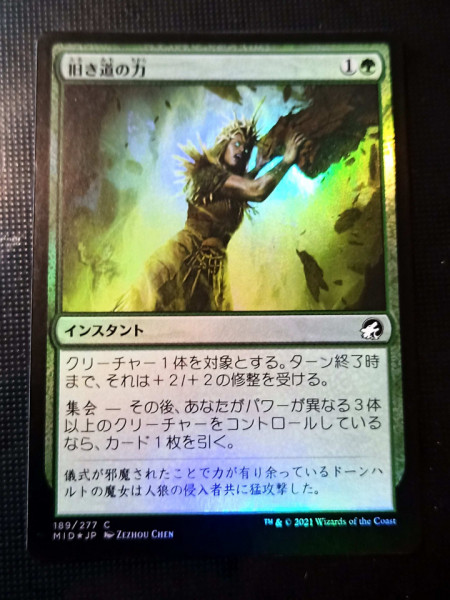 Might of the Old Ways FOIL - japonez