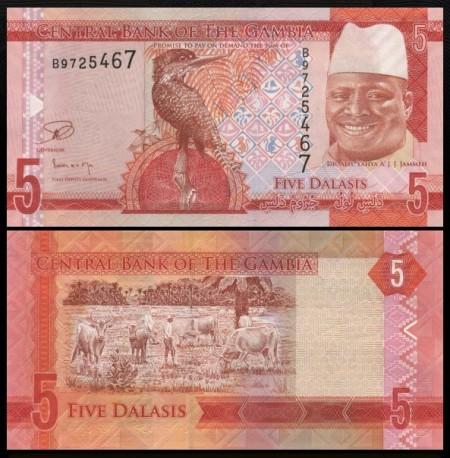 Gambia 2015 -   5 dalasis, necirculata
