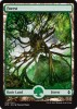 Forest - Battle for Zendikar  x5