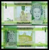 Jersey 2010 -  1 pound, necirculata