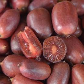 Mini kiwi Actinidia arguta Scarlet September femela stoc epuizat