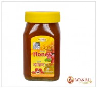 Patanjali Litchi Pure Honey 500Grams