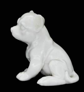 Silicon Dog