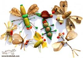 Poze ATELIER COLAJE: jucării / decorațiuni / mici tablouri (cu elemente din natură) (grup minim: 4 persoane / 1 ora)