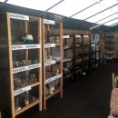 Colecții Biodiversitate