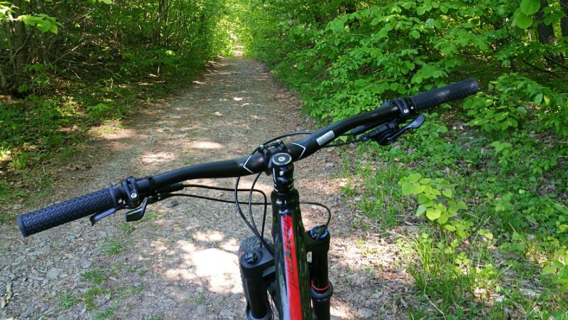 4 trasee de bicicleta langa Bucuresti potrivite si pentru copii