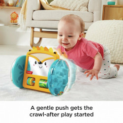 Arici Rulant cu Oglinda Fisher Price - Play & Crawl