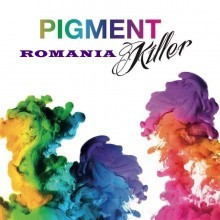 Poze Pigment Killer 15 ml incl. Stick de antrenament USB