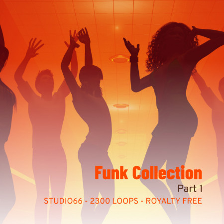 Funk Groove Collection Part 1 WAV Loops Download