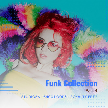 Funk Groove Collection Part 4 WAV Loops Download