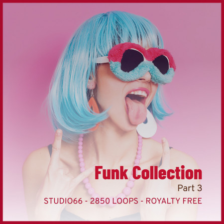Funk Groove Collection Part 3 WAV Loops Download