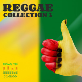 Reggae Vibe Collection Part 3 WAV Loops Samples