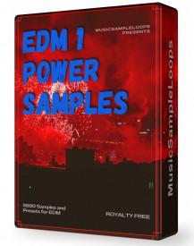 EDM Power Samples 1 Wav Loops