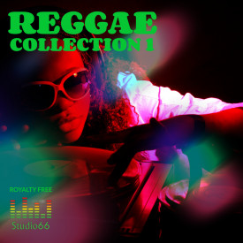 Reggae Vibe Collection Part 1 WAV Loops Samples