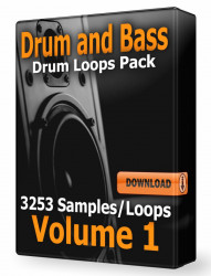 Drum and Bass Drum Loops Volume 1 WAV Samples Download