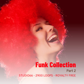 Funk Groove Collection Part 2 WAV Loops Download