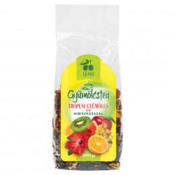 Ceai de Fructe Exotice ISZ