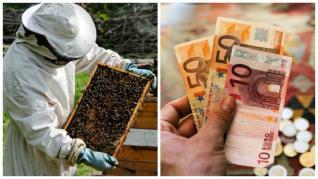 Valoare ajutor apicultori PNA si termenul limita pentru depunere 2020 - 2022