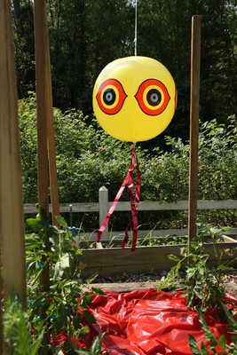 Balon sperietor pasari daunatoare (anti grauri, anti porumbei, anti ciori, anti vrabii, anti prigorii)