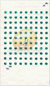 Cartela cu placute de opalit pentru marcat matcile - Albastru
