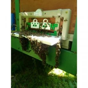 Fund din plastic antivarooa cu colector de polen