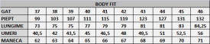 Cămaşă Body Fit Arctic - Cămaşă pentru bărbaţi cu mânecă lungă şi croială Body Fit. Compoziţie 80% bumbac, 20% poliester. - Deppo.ro