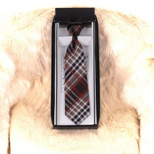 Cravată Multicolor Clasică