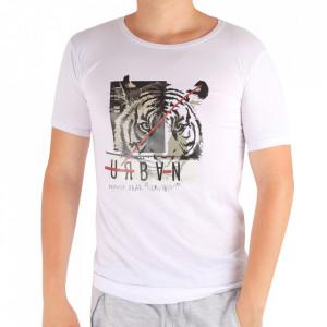 Tricou pentru bărbați Cod LL45 White