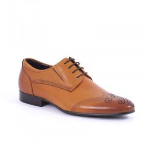 Pantofi din piele naturală Davius - Pantofi maro din piele naturală, model simplu, finisaje îngrijite cu undesing deosebit prin vârful perforat - Deppo.ro