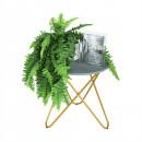 RONDEL - Kisasztal, szürke/arany festés