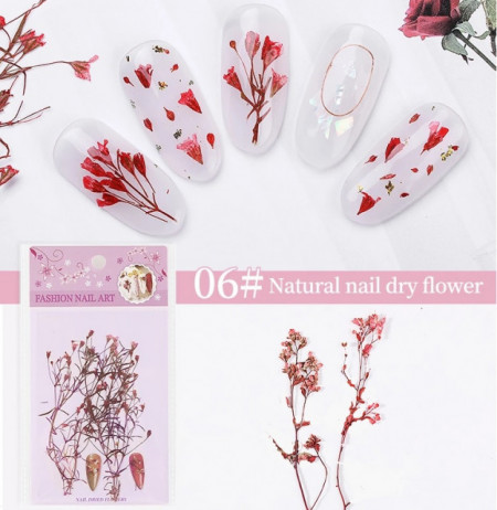 Set flori uscate 06 Red