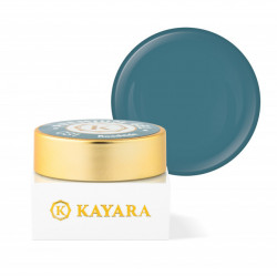 Gel color premium UV/LED Kayara 031 Roadside