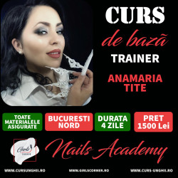 CURS DE BAZA - ANAMARIA TITE