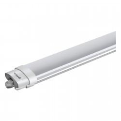 Lámpatest ProLine IP65 36W, 1200mm, Braytron, hideg fény