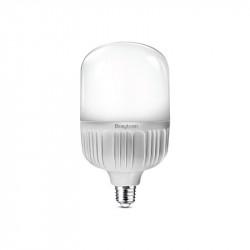 LED izzó 30W T100 E27, Braytron, meleg fény