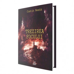 E-book Trezirea focului - Costin Neață