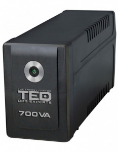 UPS TED Electric 700VA / 400W Line Interactive cu 2 iesiri schukoTED-700