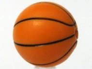 43702pb02-4 Basketbal standaard zwarte lijnen Oranje NIEUW loc
