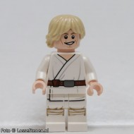 sw551 Star Wars:Luke Skywalker (Tatoine) NIEUW loc
