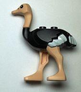 24689pb01c01 Struisvogel zwart NIEUW *0D000