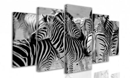 Tablou modular, Zebra