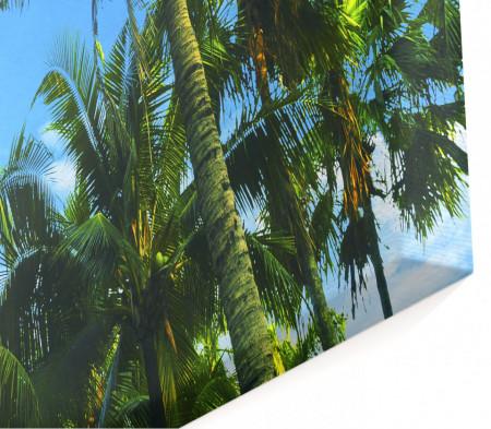 Tablou modular, Palmieri pe fundalul cerului.