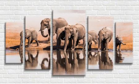 Multicanvas, Elefanți lângă râu