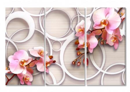 Multicanvas, Orhideea roz pe un fundal 3D.