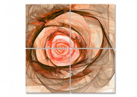 Multicanvas, Trandafirul de culoarea piersicii